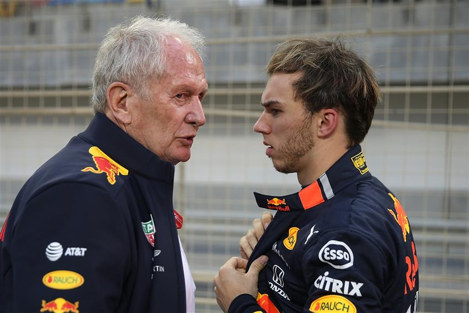 Pierre Gasly and Helmut Marko at Red Bull - Formula1news.co.uk